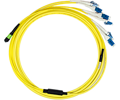 MPO Trunk Cable Assemblies