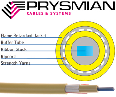 Prysmian COLink RCLT Ribbon Distribution Cable